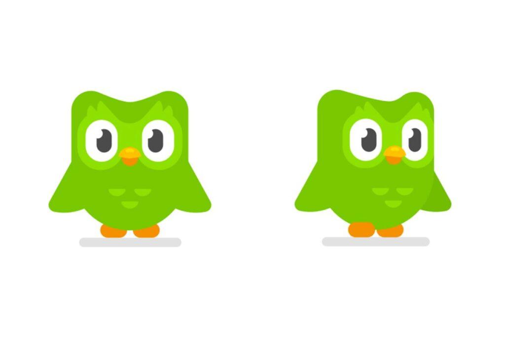 logo aplicatie duolingo canstand in doua bufnite verzi
